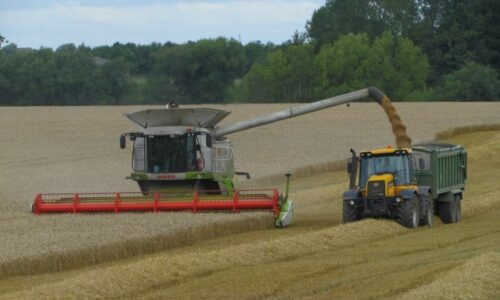 Harvest time, working on a farm, Vicky Anderson Business Services, Support for your business, secretary services