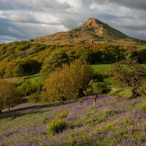 Roseberry Topping, Local Landmark, Great Ayton, North Yorkshire, Vicky Anderson Business Services , Training